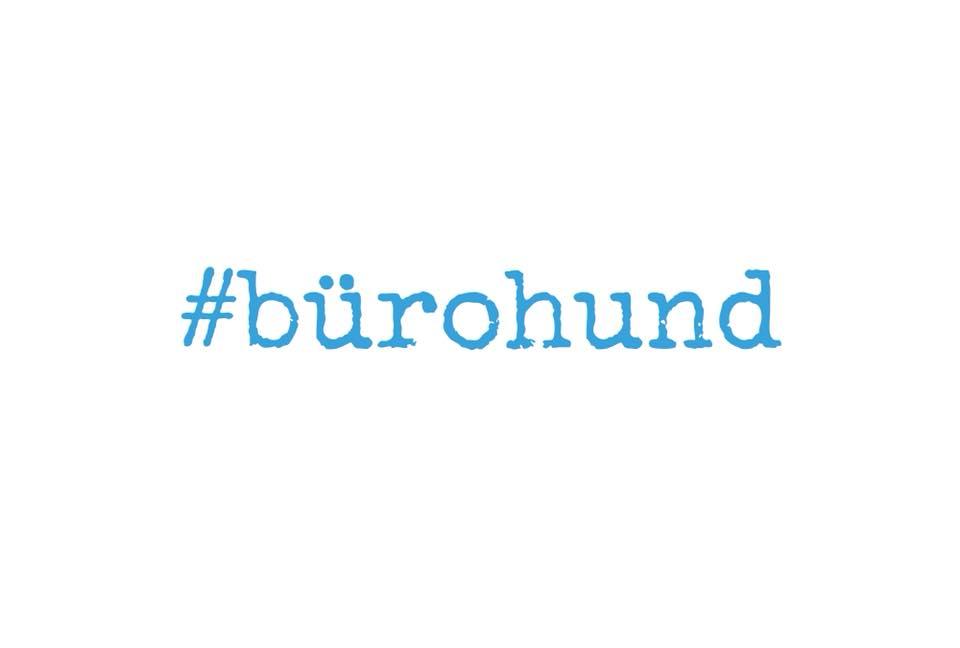 #bürohund