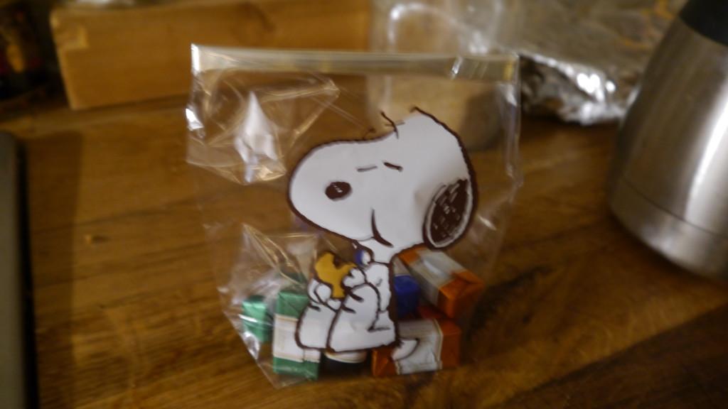 Hunderund_Snoopy_031215