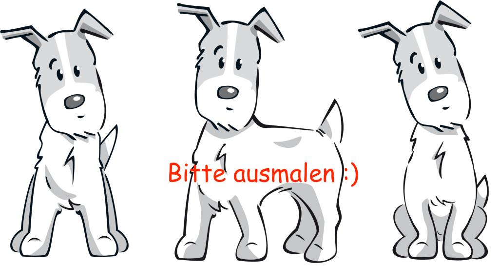 Welche Farben bekommt dein Hund?