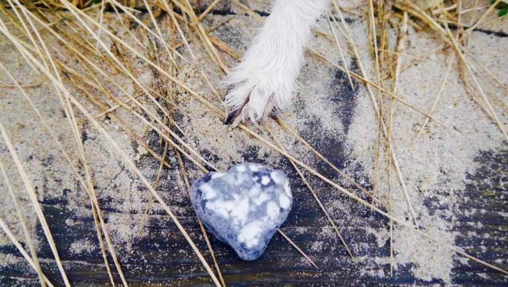 Auszeit für Sensible | 5 Tage Ostsee für die Seele