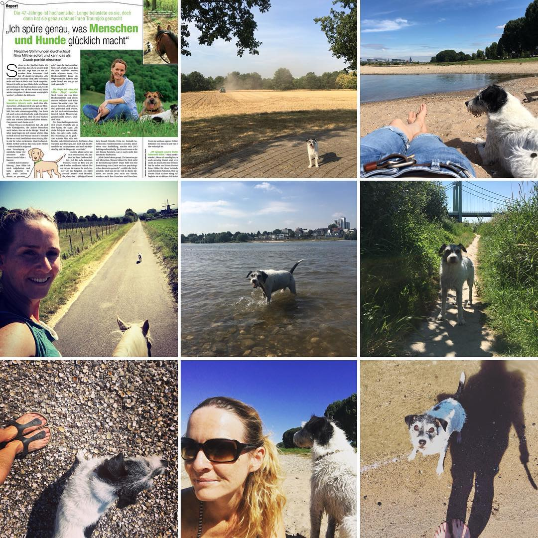 Mein Monat ohne Social Life | Selbstbestimmter leben