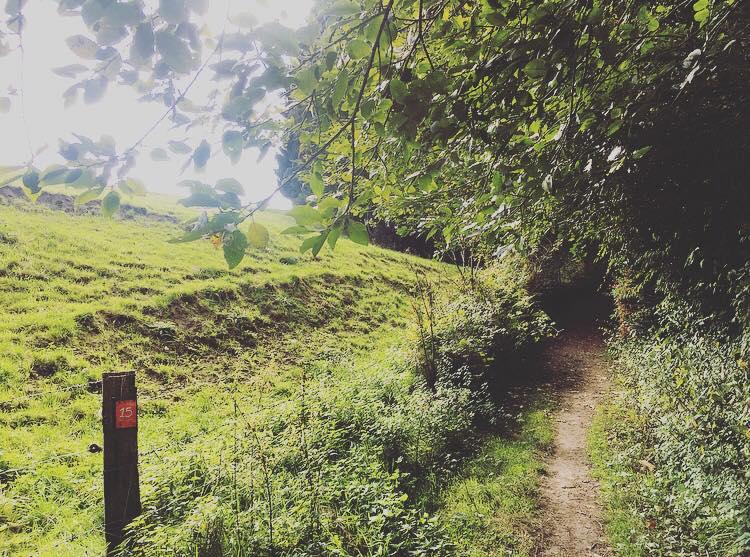 Unterwegs mit der Wandersfrau im Bergischen Land